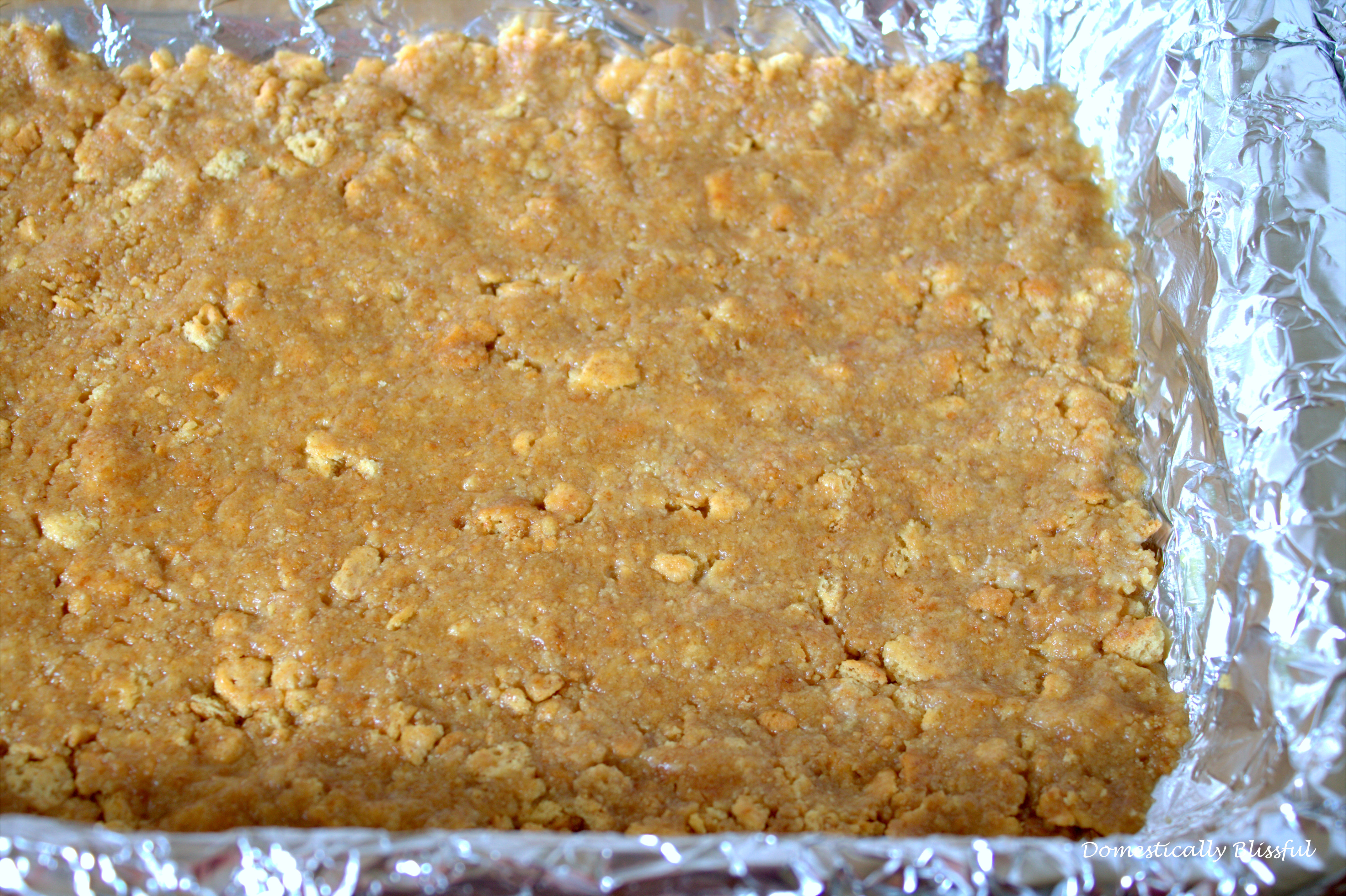 S'mores Brownies Prebaked Crust