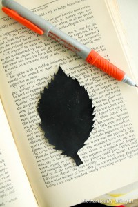 Trace Leaf on Book Page