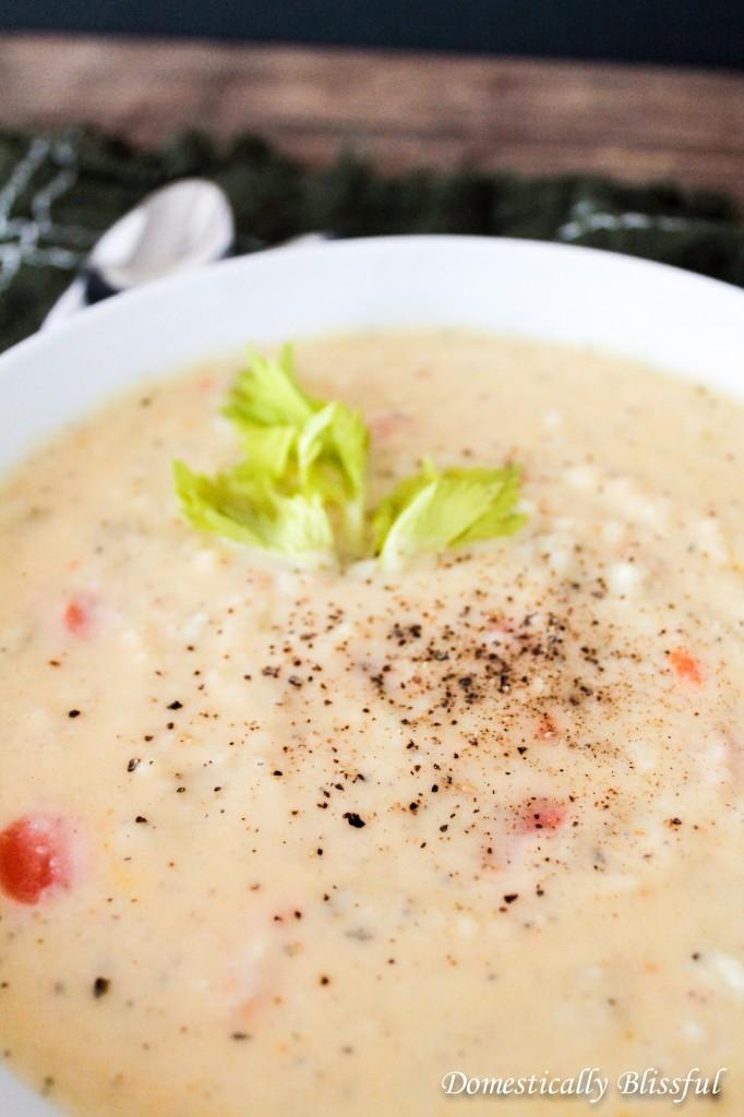 Havarti Soup