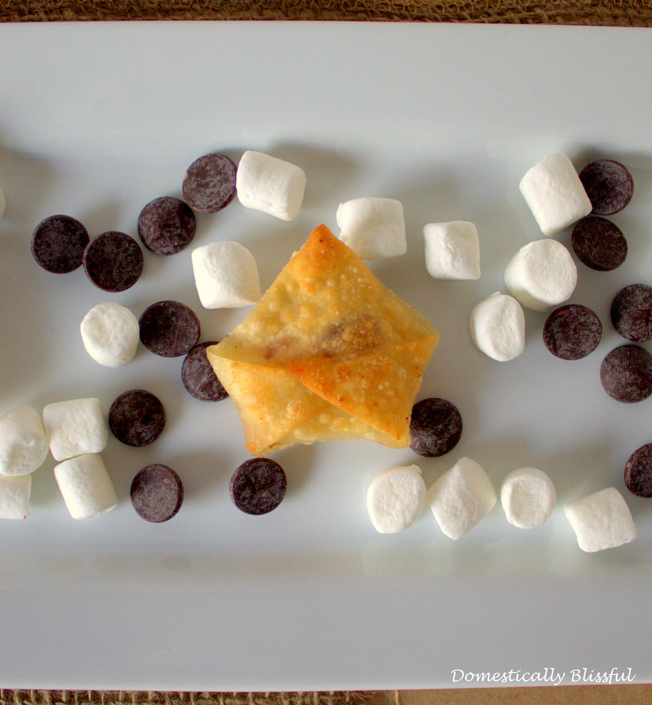 Fried Wanton S'more