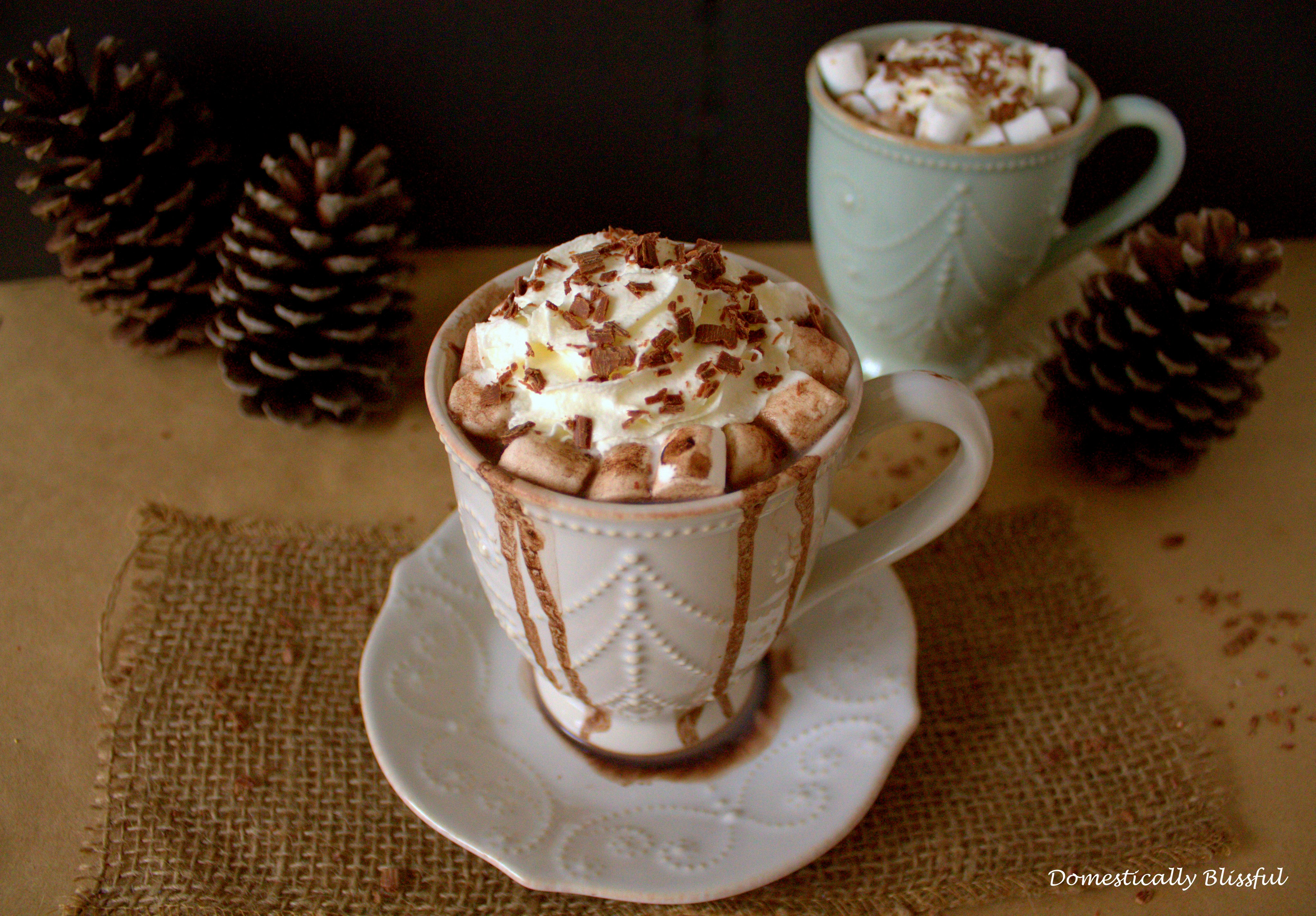 French Vanilla Hot Chocolate