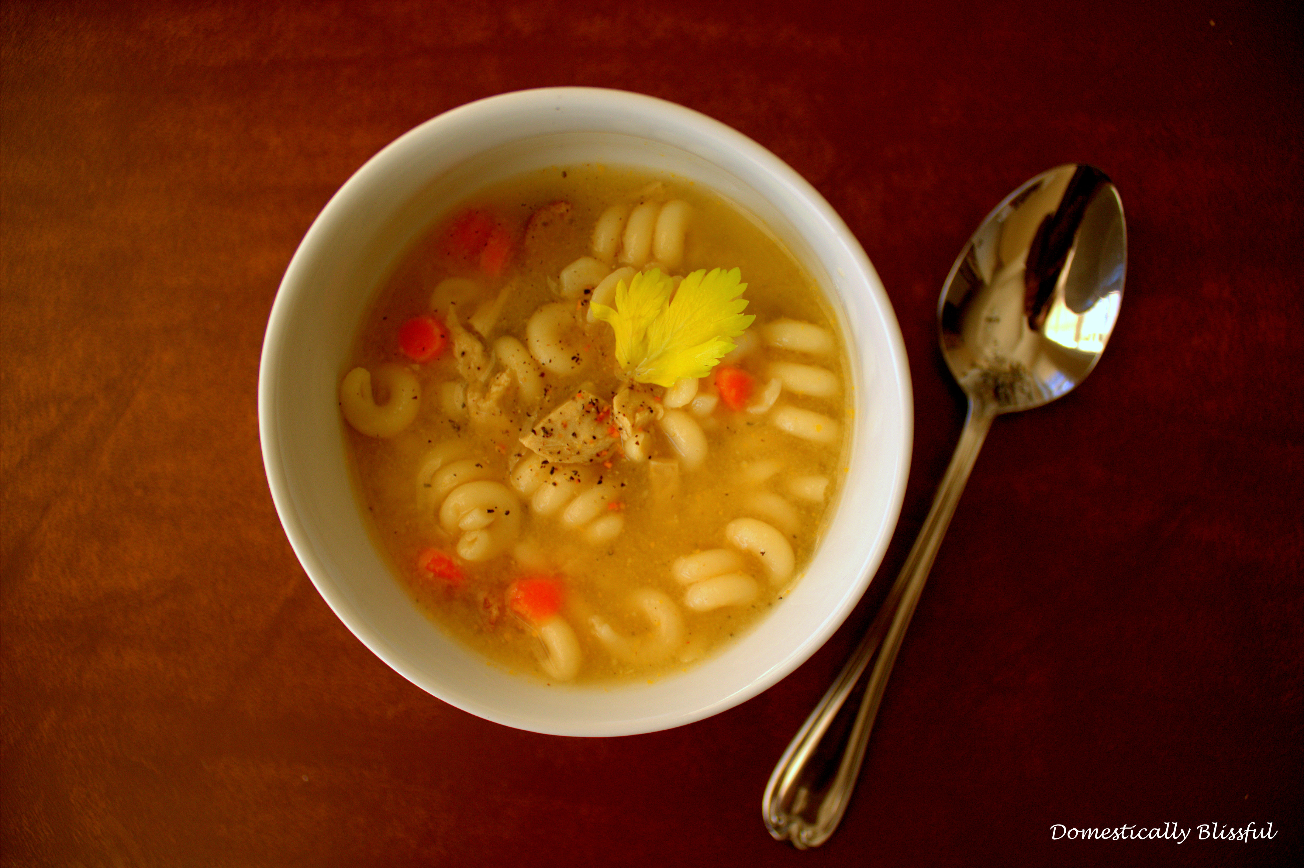 Hearty Vegetarian Chicken Noodle Soup