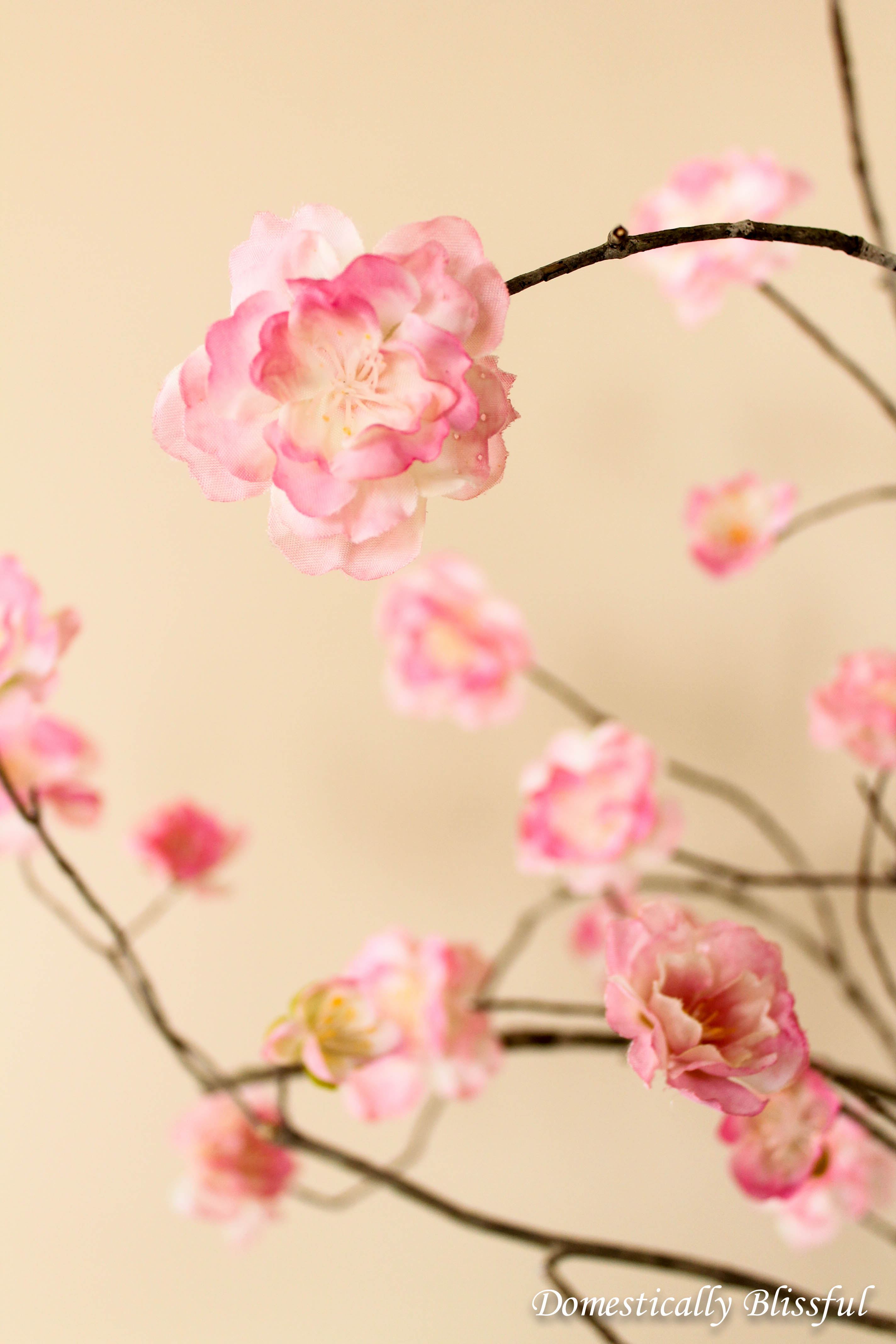 DIY Stemmed Cherry Blossoms