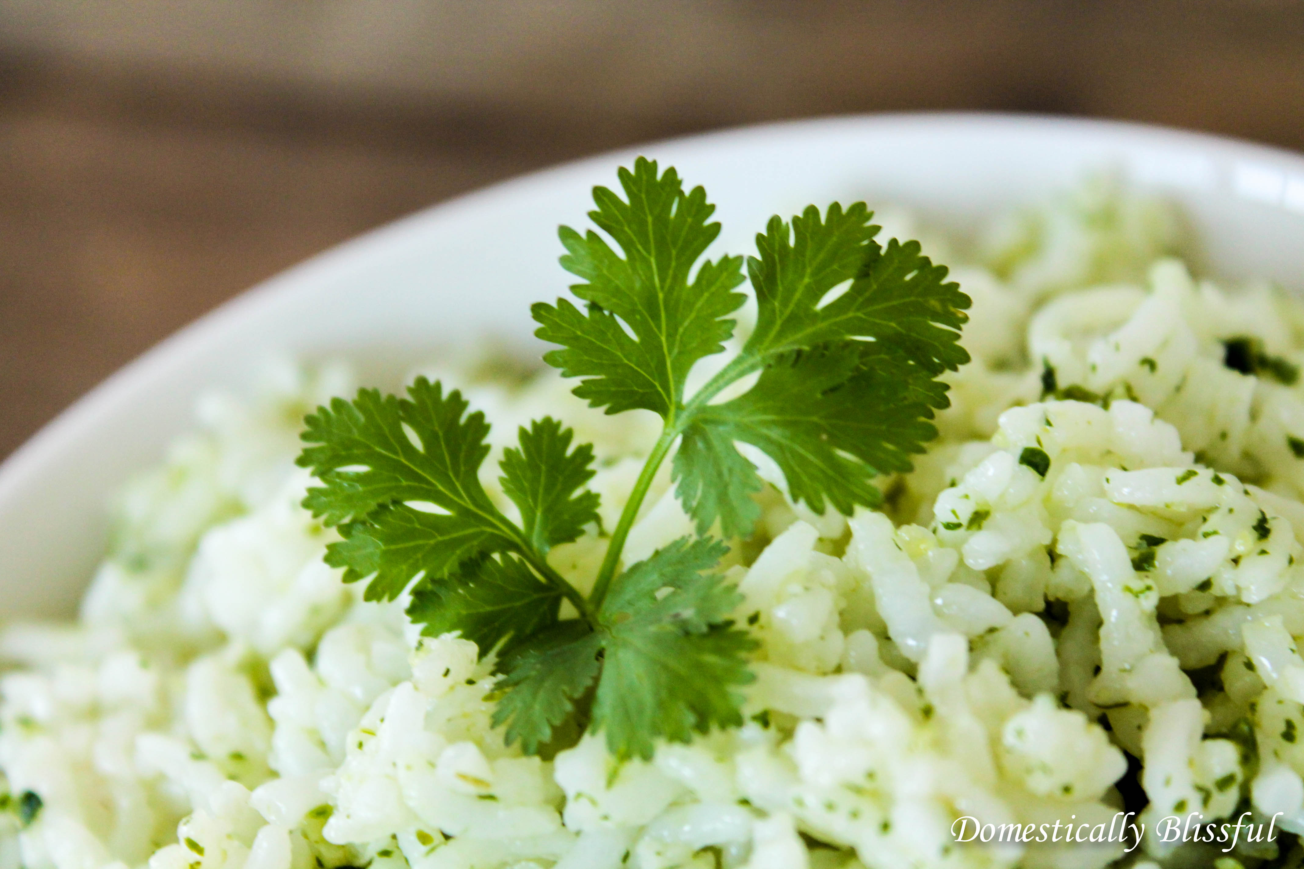 Cilantro Lime Rice