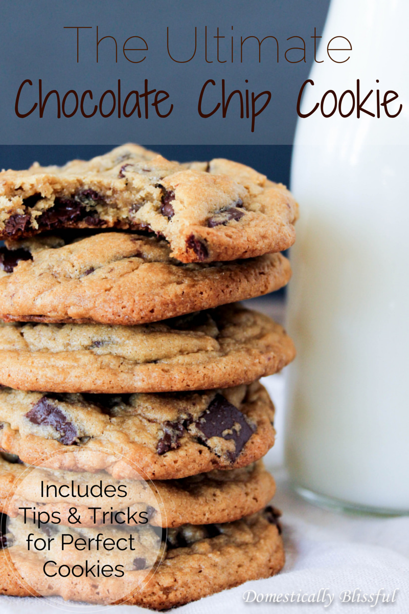 Ultimate Chocolate Chip Cookie