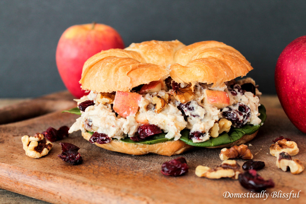 Sandwich with Apples Cranberrys and Chicken