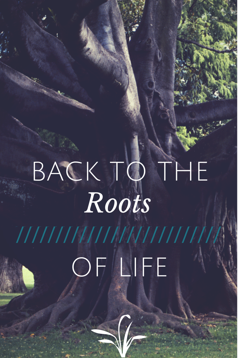 Back to the Roots of Life