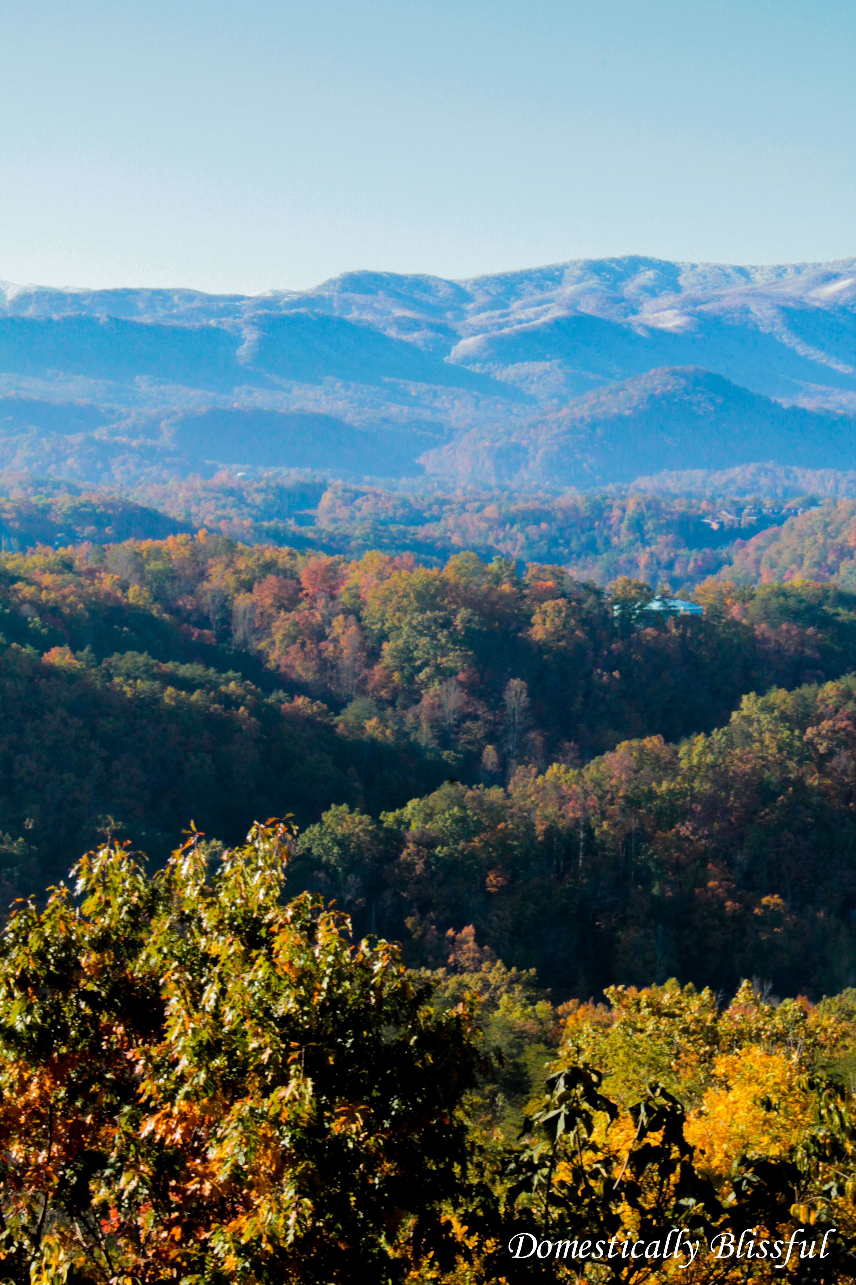 Fall in the Smokey Moutains
