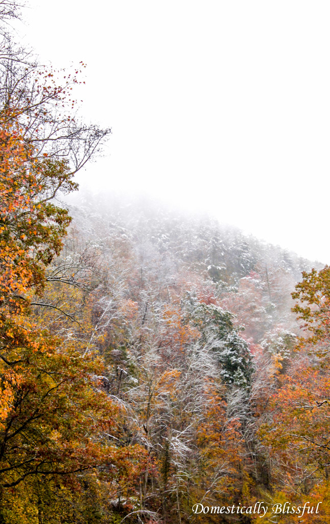 Snow in the Smokey Mountains