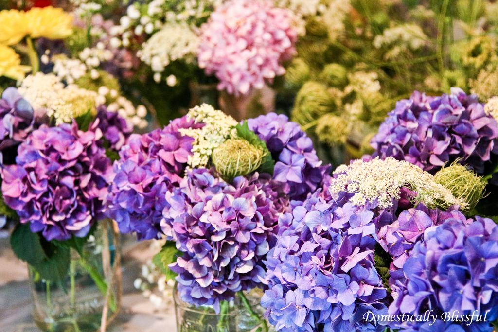 Buy flowers in bulk