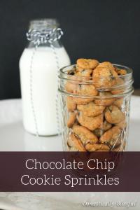 Chocolate Chip Cookie Sprinkles