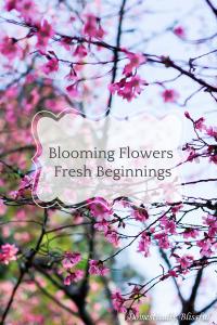 Blooming Flowers Fresh Beginnings