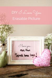 DIY I Love You Erasable Picture