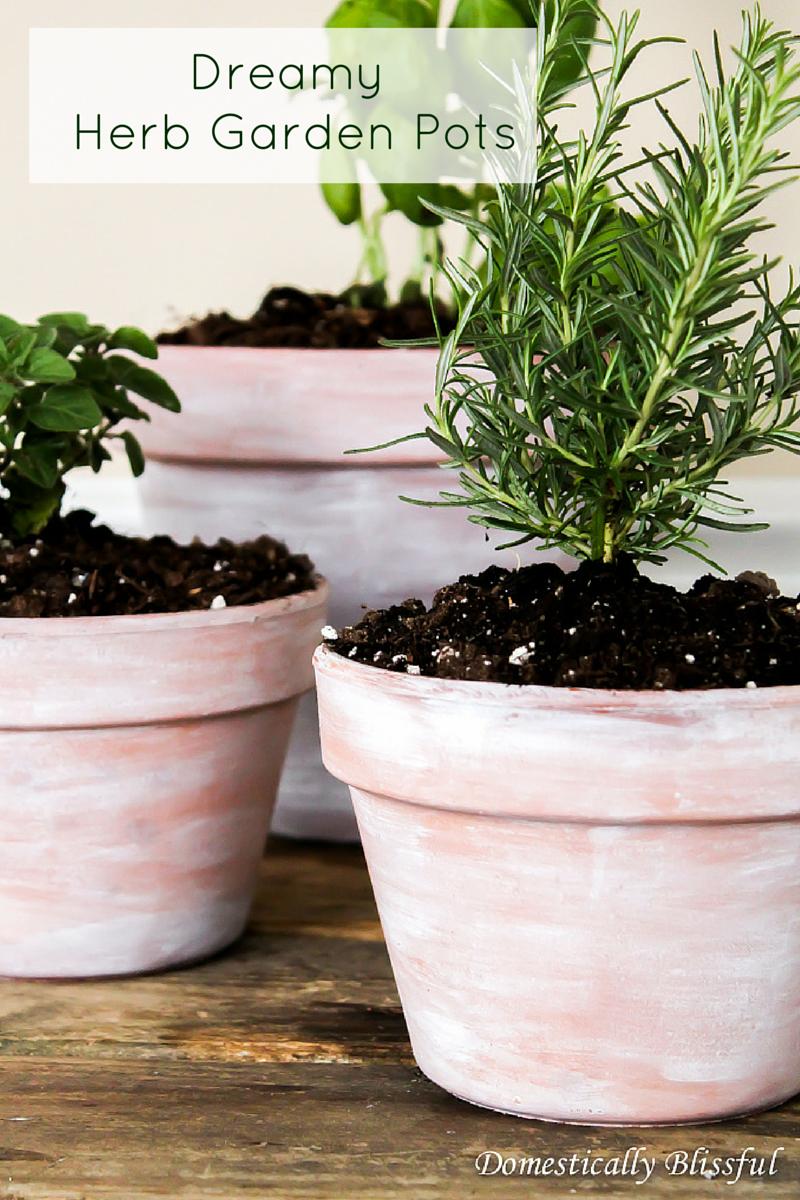 Dreamy Herb Garden Pots