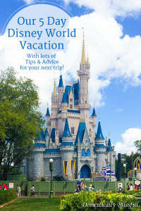 Our 5 Day Disney World Vacation