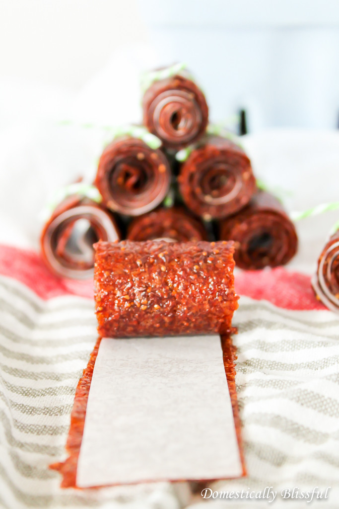 Do you have more strawberries than you know what to do with? These Strawberry Fruit Leathers make a delicious snack & are healthy for you too!