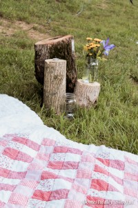 Wedding Reception Picnic Blankets & Log Vignettes