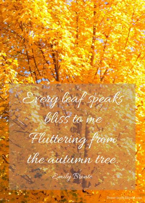 Every leaf speaks bliss to me Fluttering from the autumn tree
