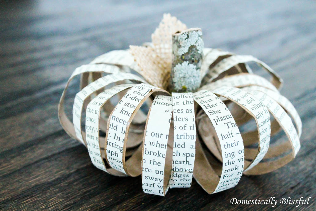 Book Page Paper Roll Pumpkin