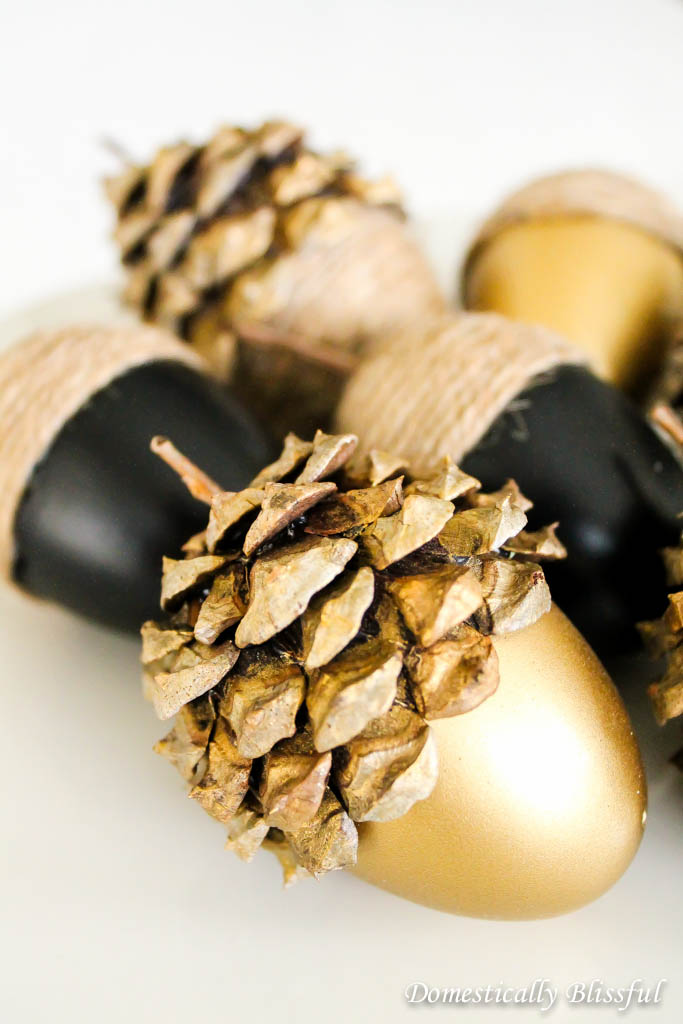 Gold Acorns