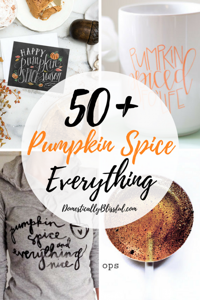 50+ Pumpkin Spice Everything for pumpkin spice season!