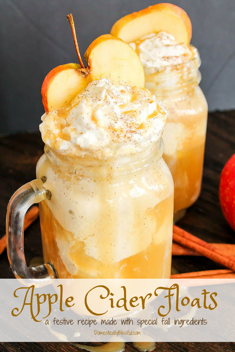 Apple Cider Floats Recipe — Dishmaps