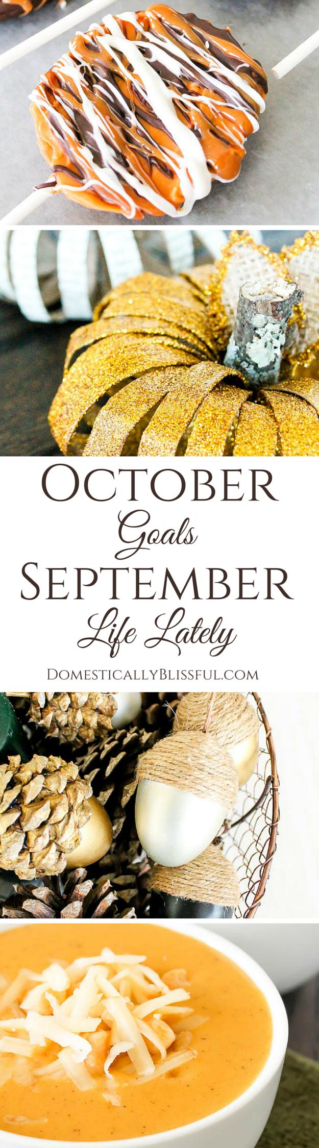 Domestically Blissful's October Goals & September Life Lately