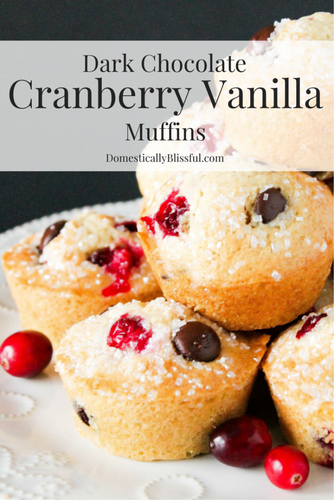 Dark Chocolate Cranberry Vanilla Muffins melt in your mouth with the flavors of winter & can be enjoyed for both breakfast & dessert!