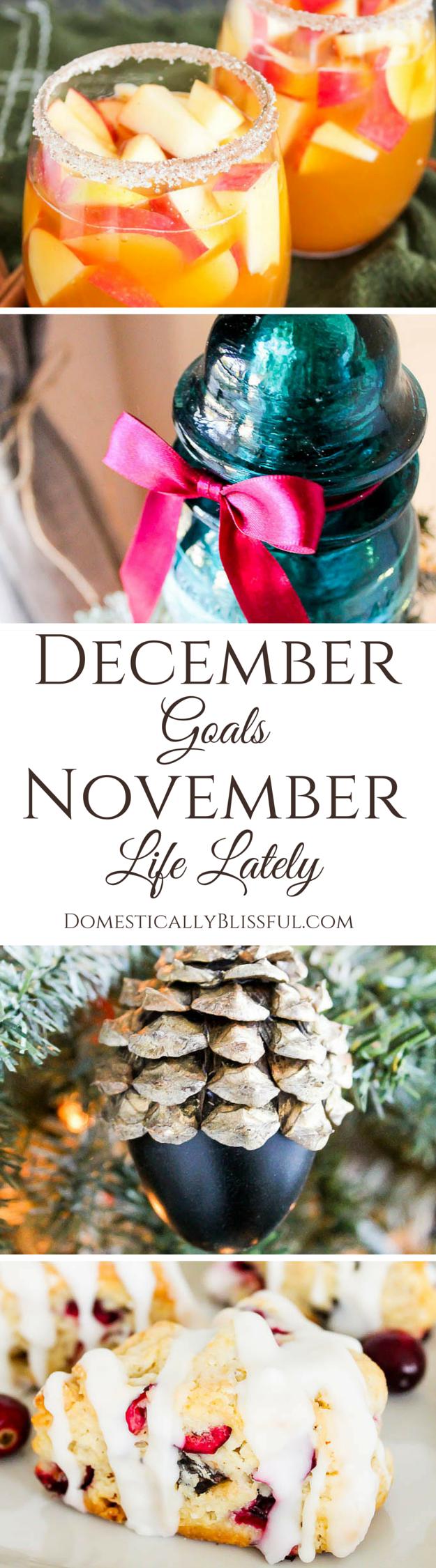 December Goals & November Life Lately