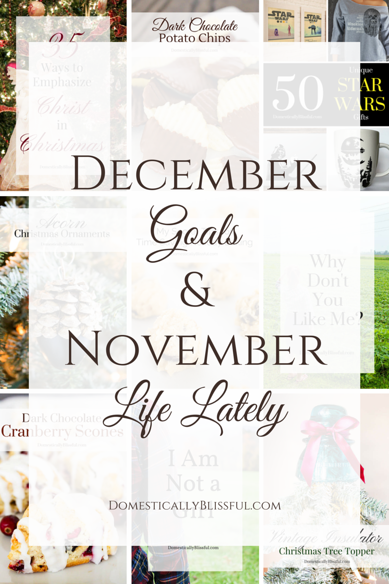 December Goals and November Life Lately