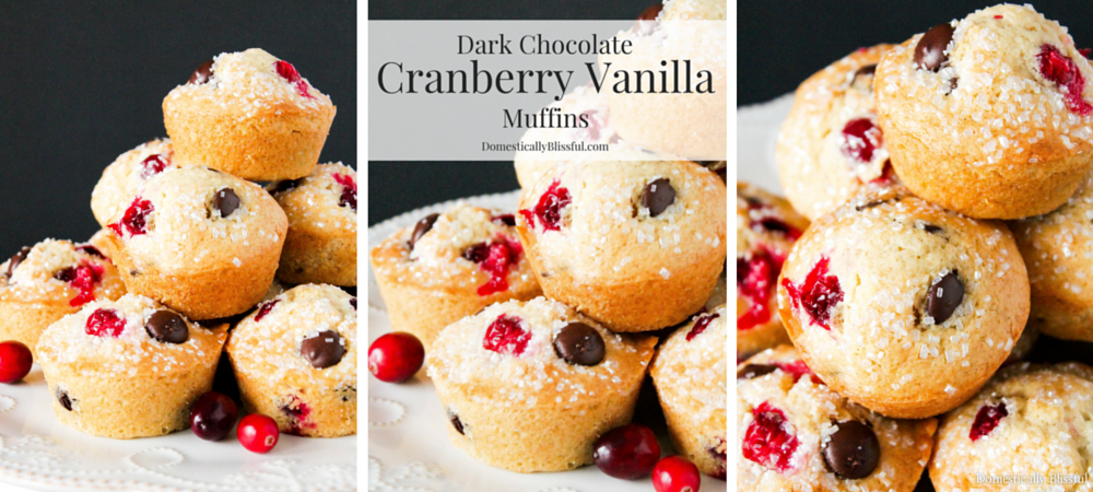Dark Chocolate Cranberry Vanilla Muffins
