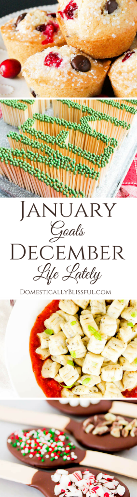 A little look into my goals for January & 2016 along with what happened with & behind the scenes of Domestically Blissful in December & 2015.