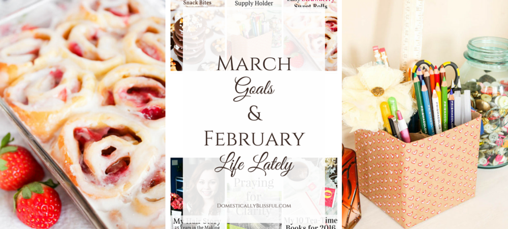 March Goals and February Life Lately