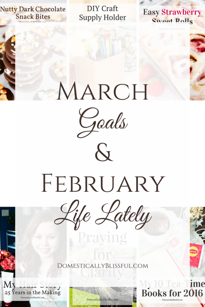 A little look into my March goals for the blog & in life, along with a recap of what happened in our life & with Domestically Blissful in February.