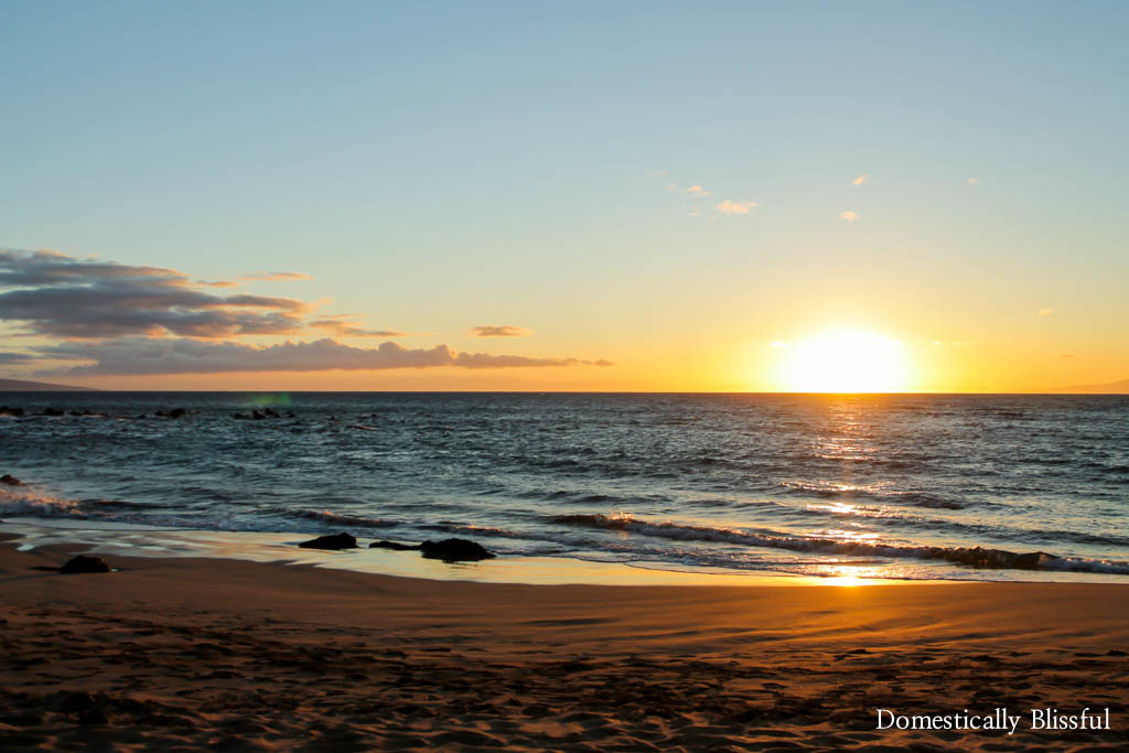A little peak at our Maui Hawaii Vacation during Roger's final spring break of dental school in 2016.