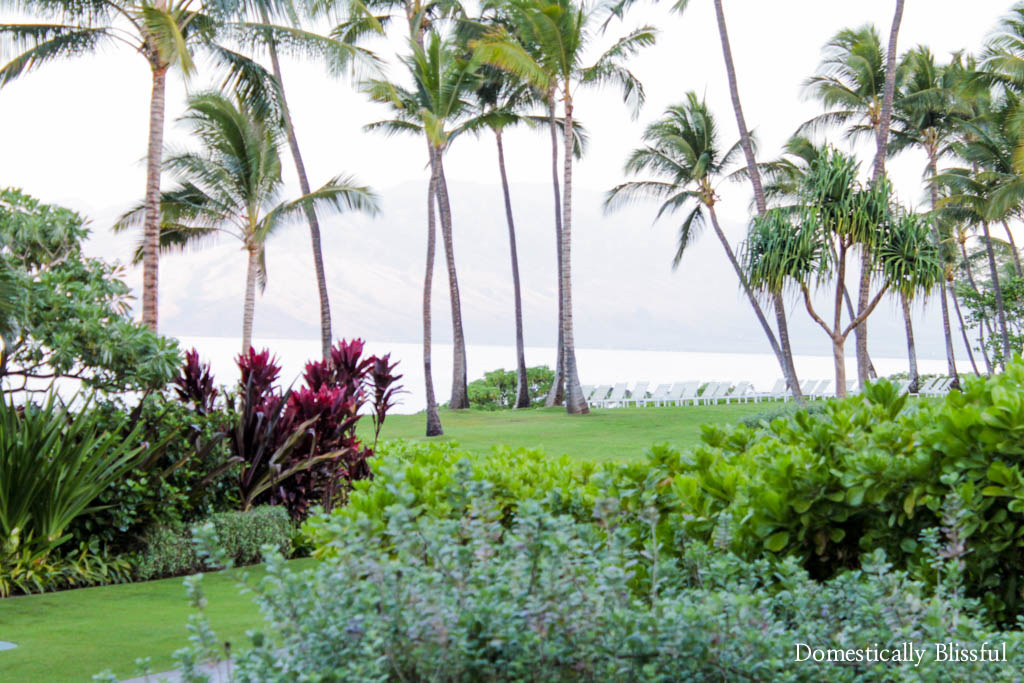 The gorgeous paradise grounds at the Andaz Maui at Wailea Resort