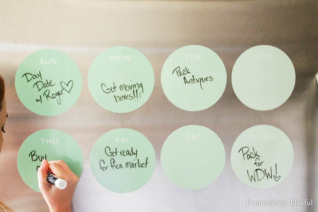 Weekly Dry-Erase Calendar Circles in Mint from Fathead