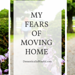 My Fears of Moving Home
