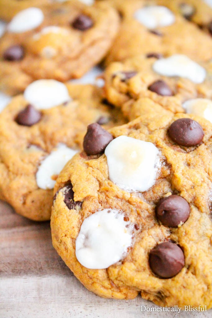 S'mores Pumpkin Spice Cookies are the perfect combination of two of your favorite fall flavors!