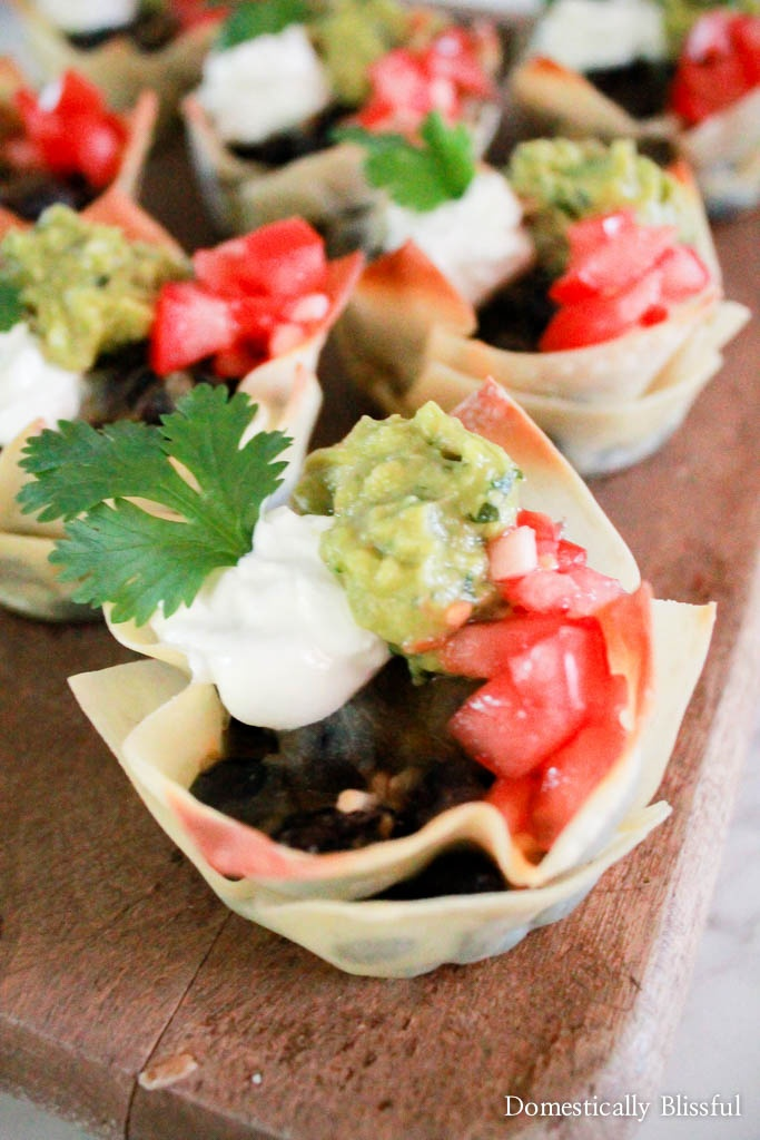 Quick Crispy Taco Bites are a tasty treat that are easy to make & tasty to eat!