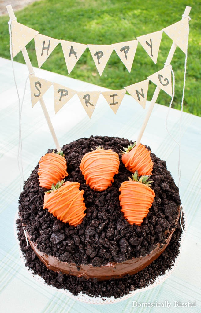 "A cute little Carrot Patch Cake with strawberry ""carrots"" on top to celebrate spring & Easter with your friends & family!"