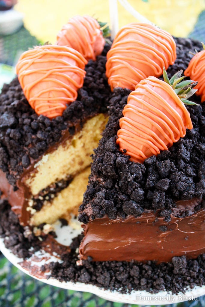 """A cute little Carrot Patch Cake with strawberry """"carrots"""" on top to celebrate spring & Easter with your friends & family!"""