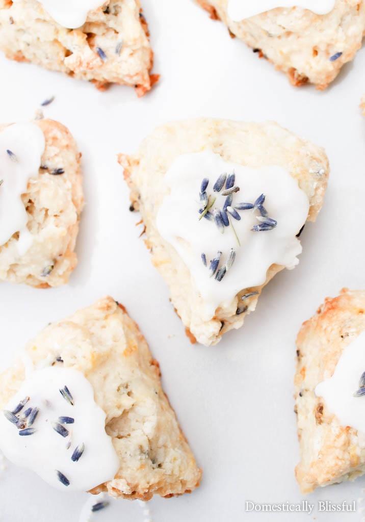 Lemon Lavender Scones - Domestically Blissful
