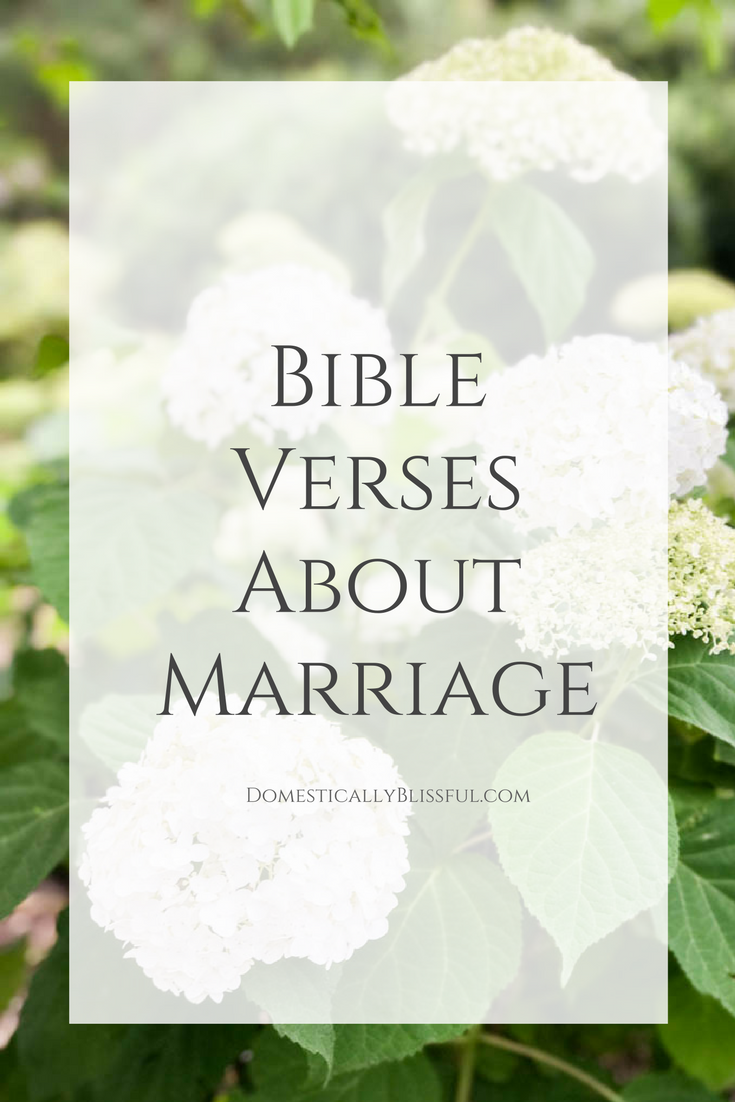 about marriage Read bible verses about marriage that offer guidance and inspiration for husbands and wives find scripture quotes on marriage and it's god-given, ordained blessing.