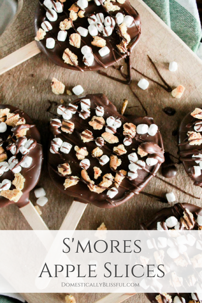 S'mores Apple Slices are a combination of two classic fall recipes with a fun twist that makes it even easier to eat this season!