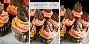 Chocolate Leaves are a fun & a delicious way to top your festive fall cakes & cupcakes this season.