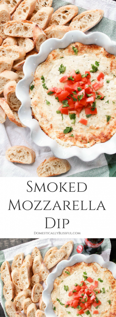 This Smoked Mozzarella Dip is filled with creamy flavors & is the perfect warm appetizer for any party or family gathering!
