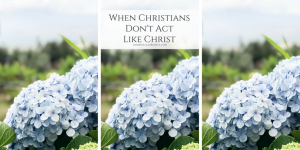 How time, prayer, & God's word can help heal wounds when Christians don't act like Christ.