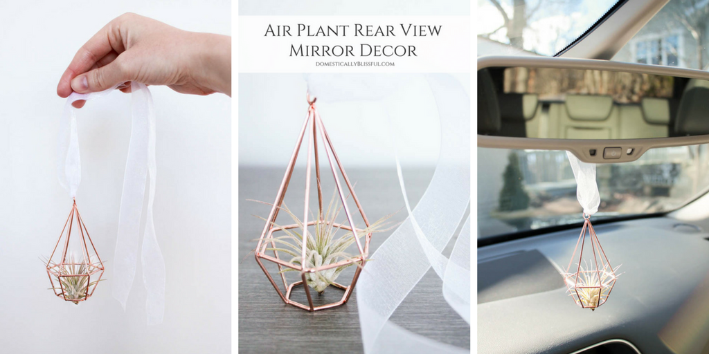 Air Plant Rear View Mirror Decor