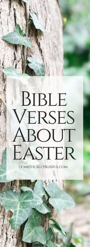 Bible verses about Easter to return our focus to the real celebration of the resurrection of Jesus.